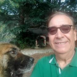 Photo de Aldo, Homme 60 ans, de Perpignan Languedoc-Roussillon